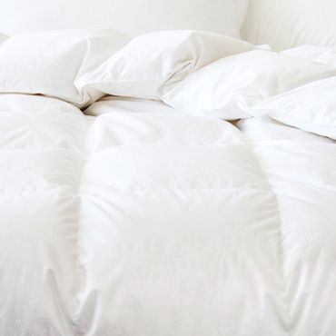 【MADE IN CANADA】Cuddle Down Chinook HUTTERITE Down Duvet - All-season Warmth