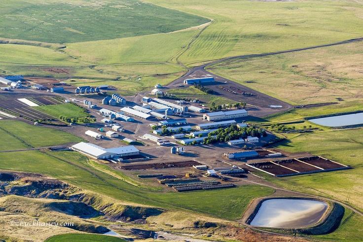 Hutterite Colony
